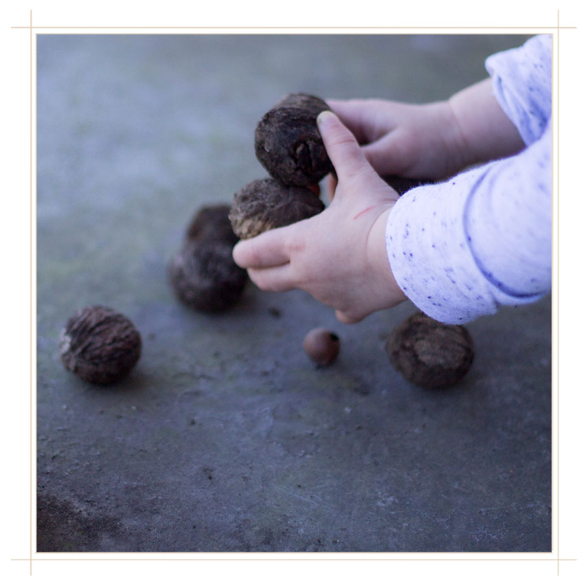 Carefully counting walnuts as she works to balance the bundle in her hands.