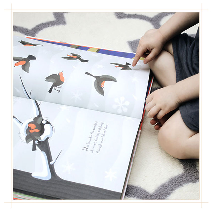 beautiful-birds-book