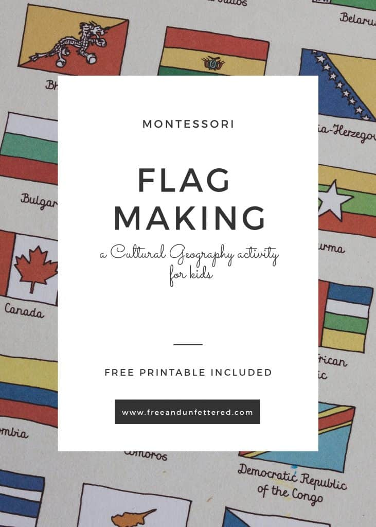 close-up of the flag illustrations from the Maps book