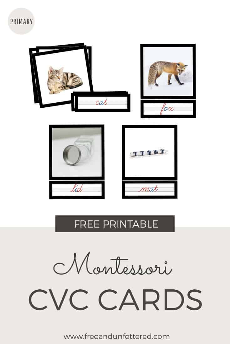 Download a free set of Montessori-inspired phonetic CVC cards for your emergent reader at www.freeandunfettered.com. They're available in both print and cursive and feature realistic images. #montessorihomeschooling #montessoriathome